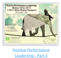 Positive Performance Leadership - Part 3